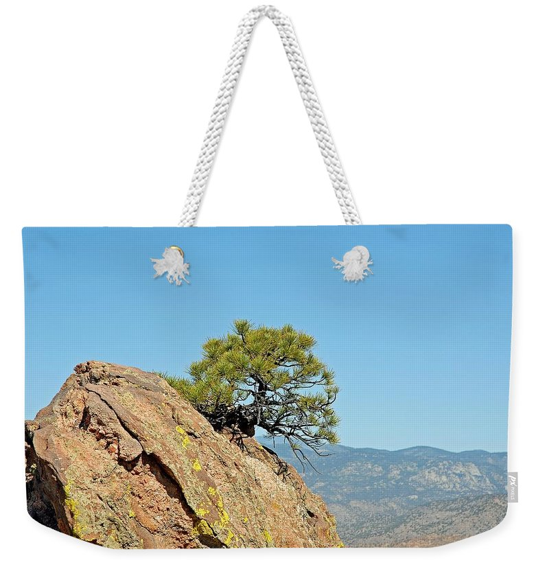 Shrub Weekender Tote Bag featuring the photograph Shrub And Rock At Canon City by Robert Meyers-Lussier