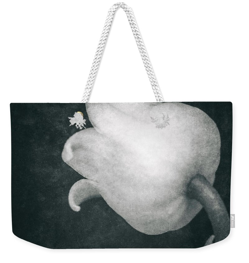 Lily Of The Valley Weekender Tote Bag featuring the photograph Shy by Wim Lanclus