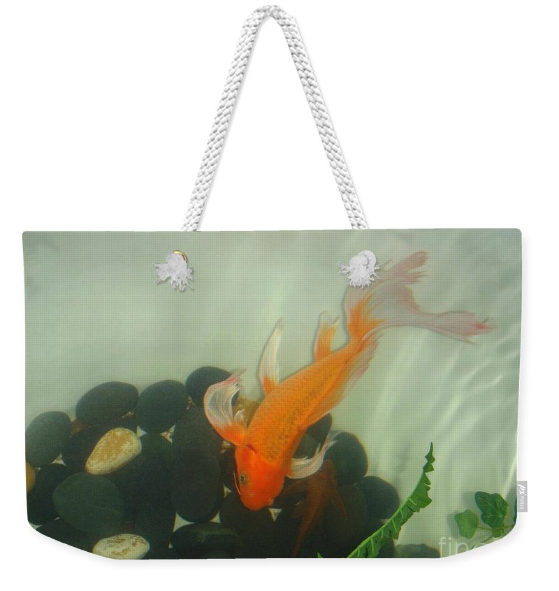 Orange Weekender Tote Bag featuring the photograph Siamese Fighting Fish 1 by Mary Deal