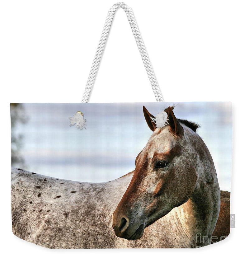Animal Weekender Tote Bag featuring the photograph Sid by Deborah Benoit