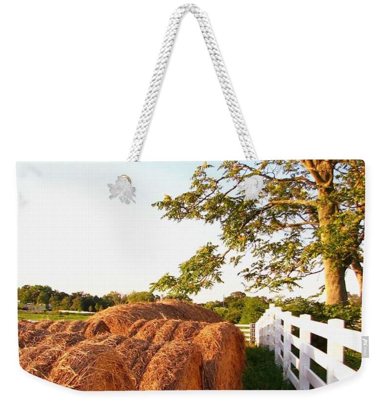Landscape Weekender Tote Bag featuring the photograph Side-by-side by Todd A Blanchard