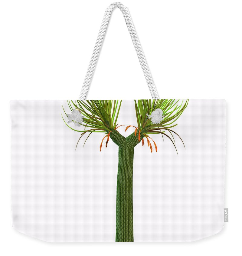 3d Illustration Weekender Tote Bag featuring the painting Sigillaria Tree by Corey Ford
