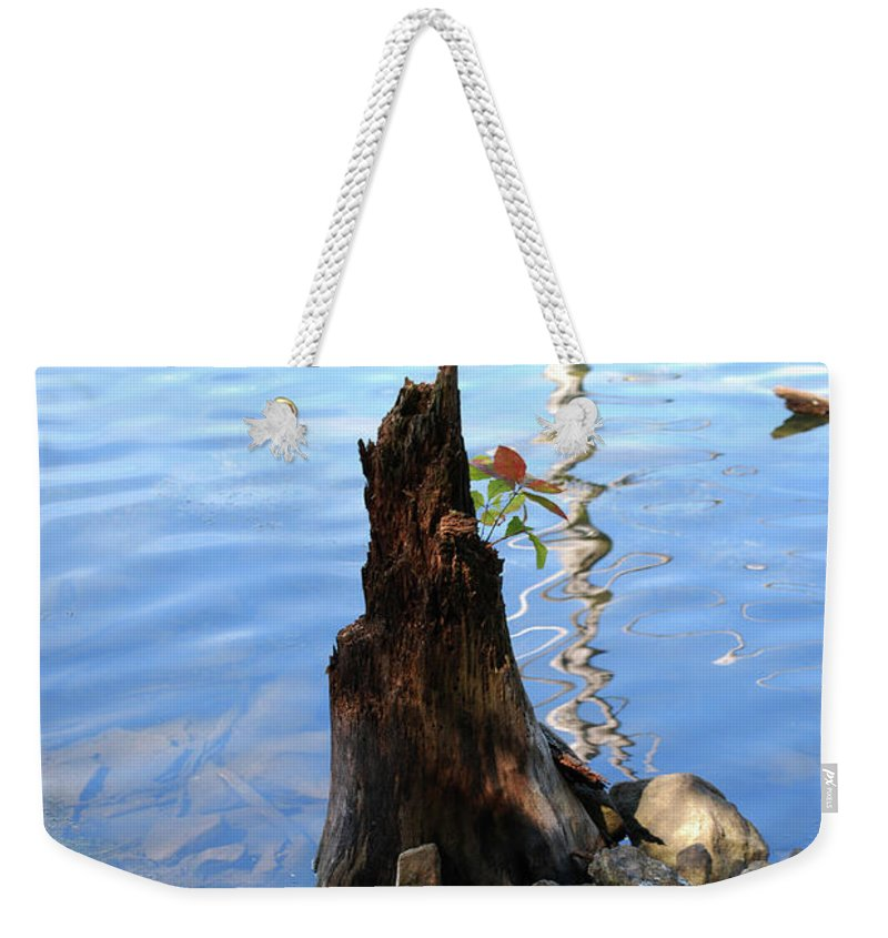 Water Weekender Tote Bag featuring the photograph Sign Of Life by Lori Tambakis