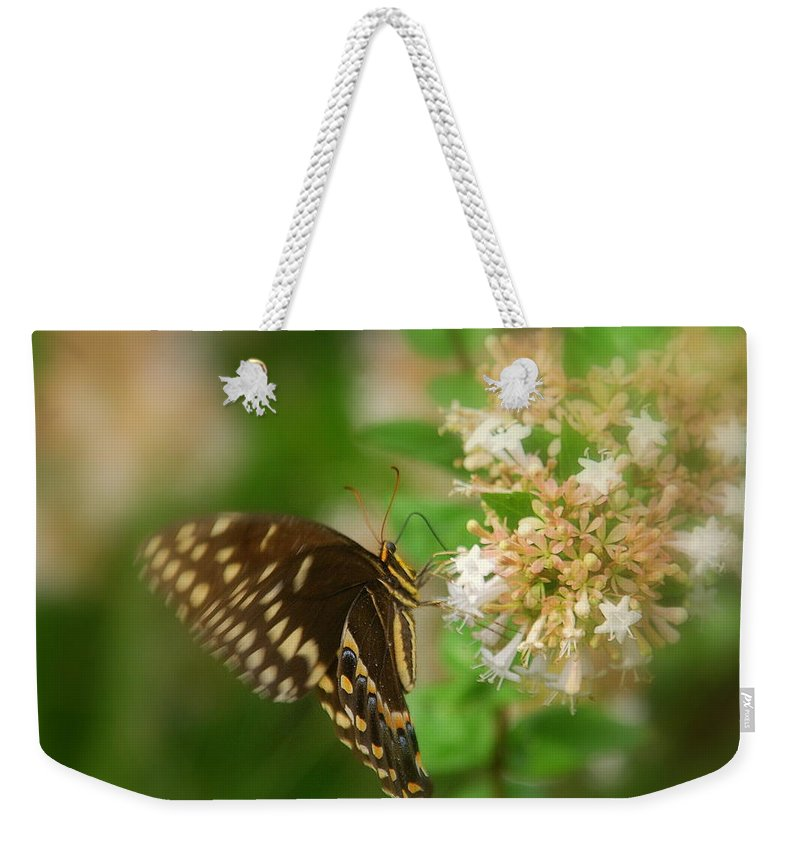 Sign Of Spring Weekender Tote Bag featuring the photograph Sign Of Spring by Susanne Van Hulst