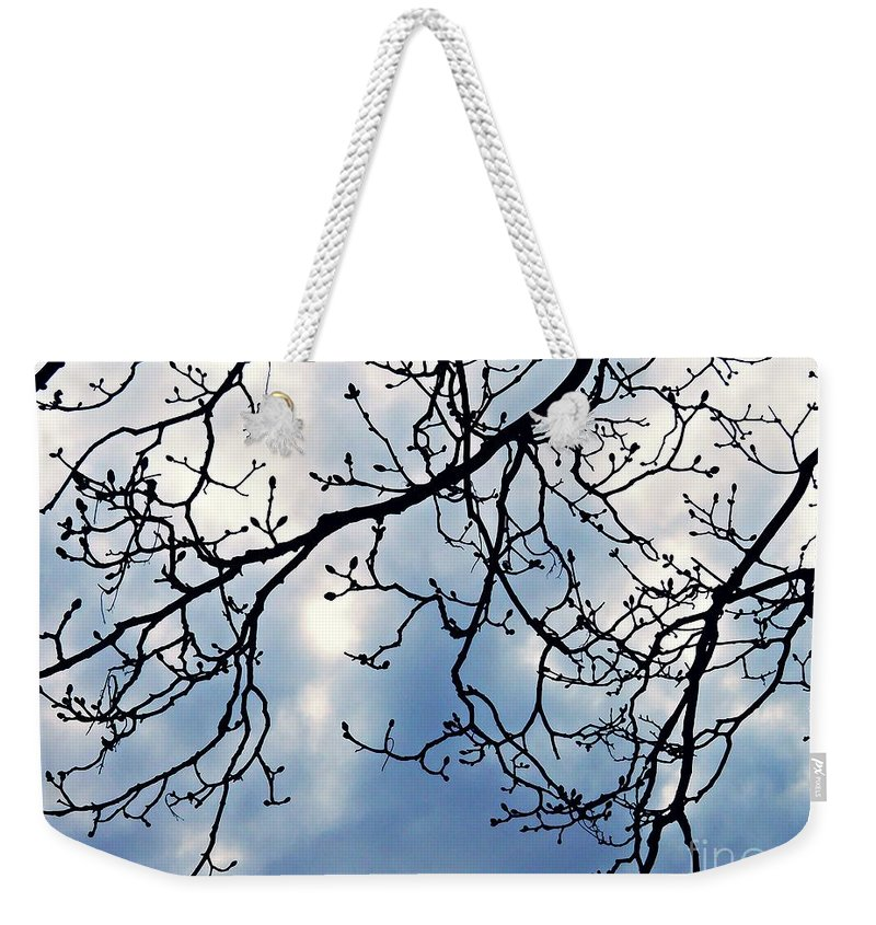 Tree Weekender Tote Bag featuring the photograph Signs Of Spring by Sarah Loft