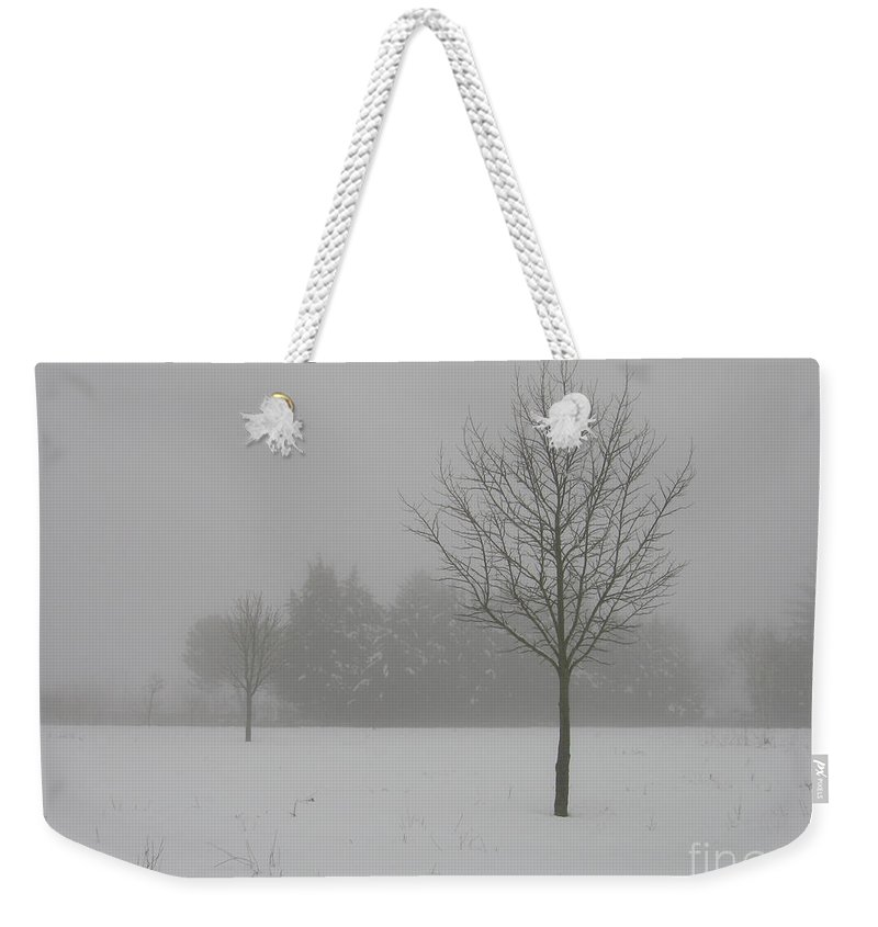 Tree Weekender Tote Bag featuring the photograph Silence by Ilaria Andreucci
