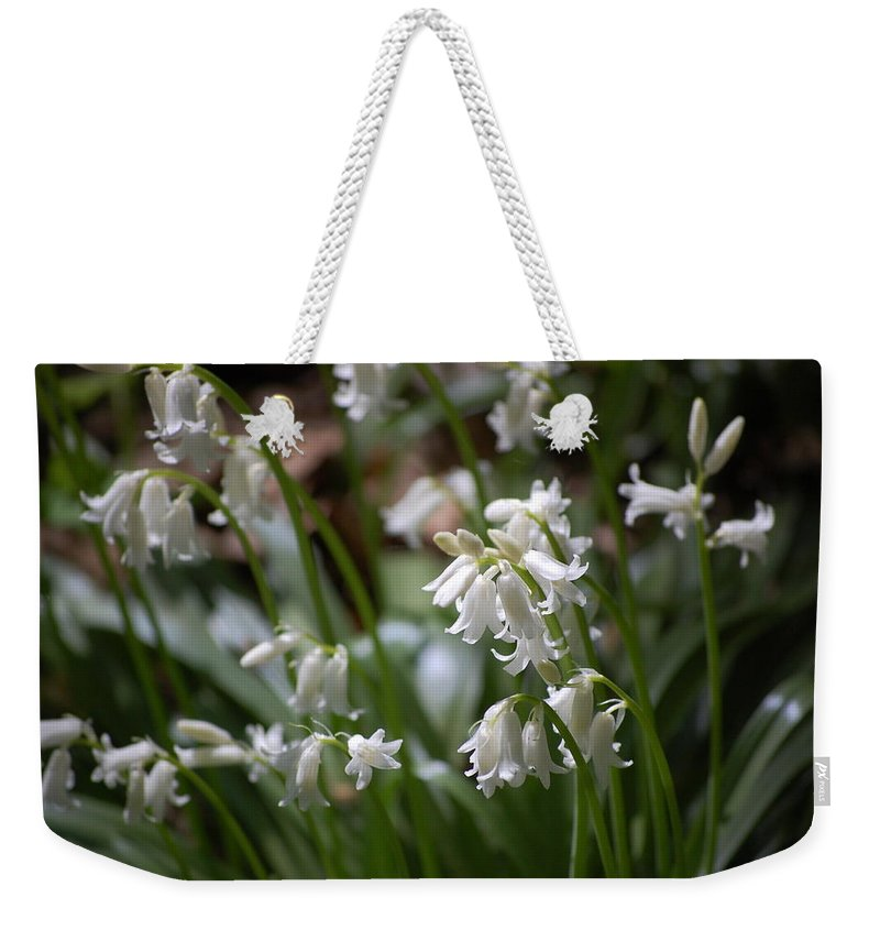 Landscape Weekender Tote Bag featuring the photograph Silver Bells by David Lane