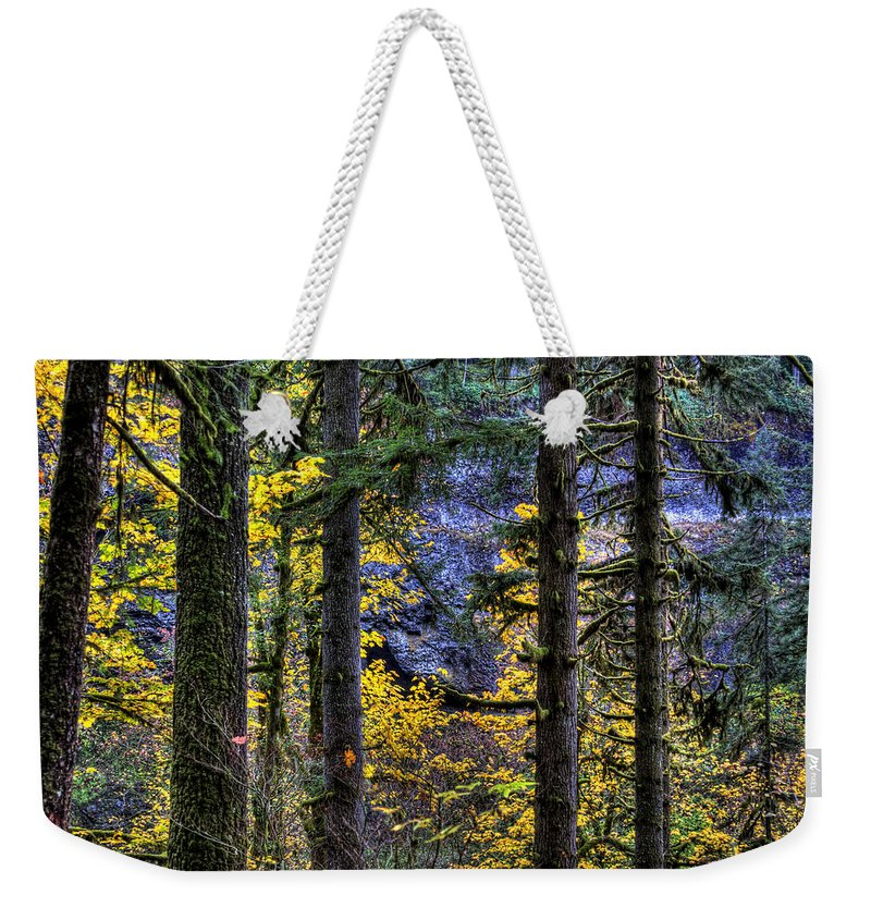 Landcsape Weekender Tote Bag featuring the photograph Silver Falls State Park Oregon 2 by Lee Santa
