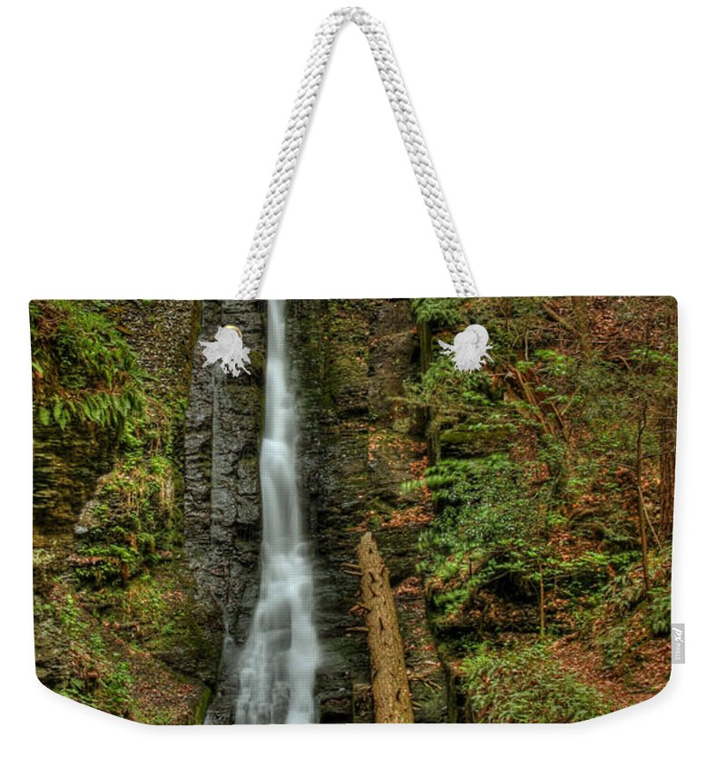 Silver Thread Weekender Tote Bag featuring the photograph Silver Thread by Evelina Kremsdorf