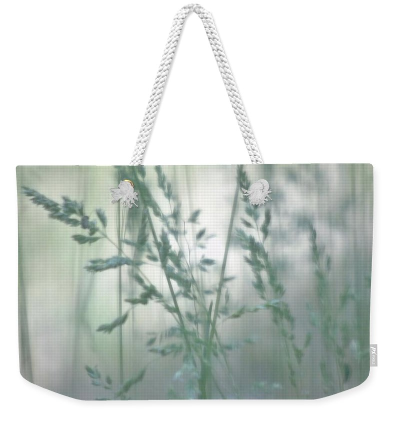 Silver Weekender Tote Bag featuring the photograph Silvery Green Grasses by Barbara St Jean