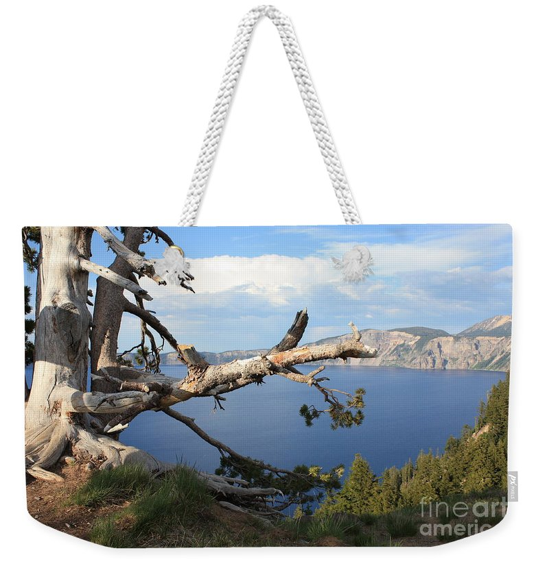 Crater Lake Weekender Tote Bag featuring the photograph Silvery Tree Over Crater Lake by Carol Groenen