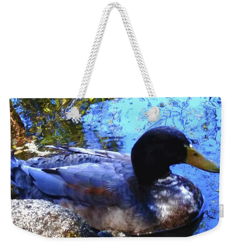Duck Weekender Tote Bag featuring the photograph Simplicity- 1 by Andrea Orozco