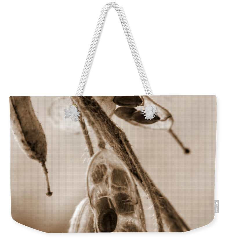 Macro Weekender Tote Bag featuring the photograph Simplicity In Sepia by Lauren Radke
