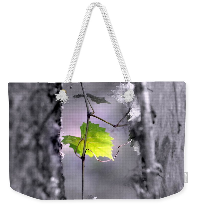 Tree Weekender Tote Bag featuring the photograph Simplicity by Jennifer Diaz