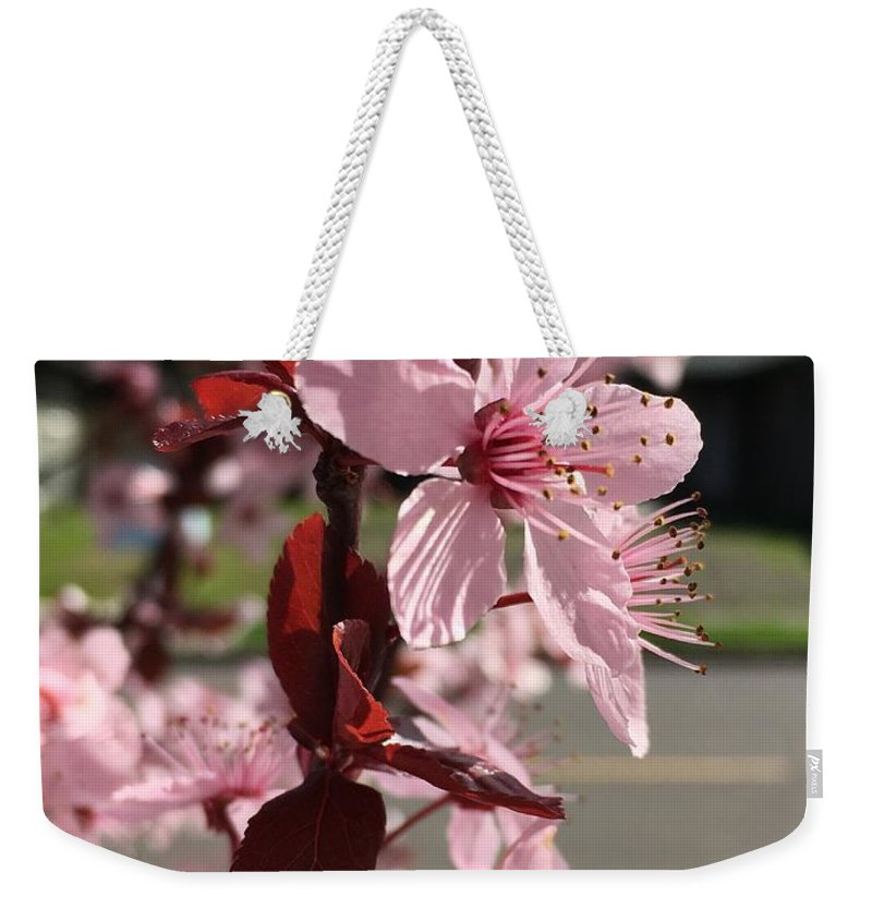 Weekender Tote Bag featuring the photograph Simply Blooming by Emilio Mojarro
