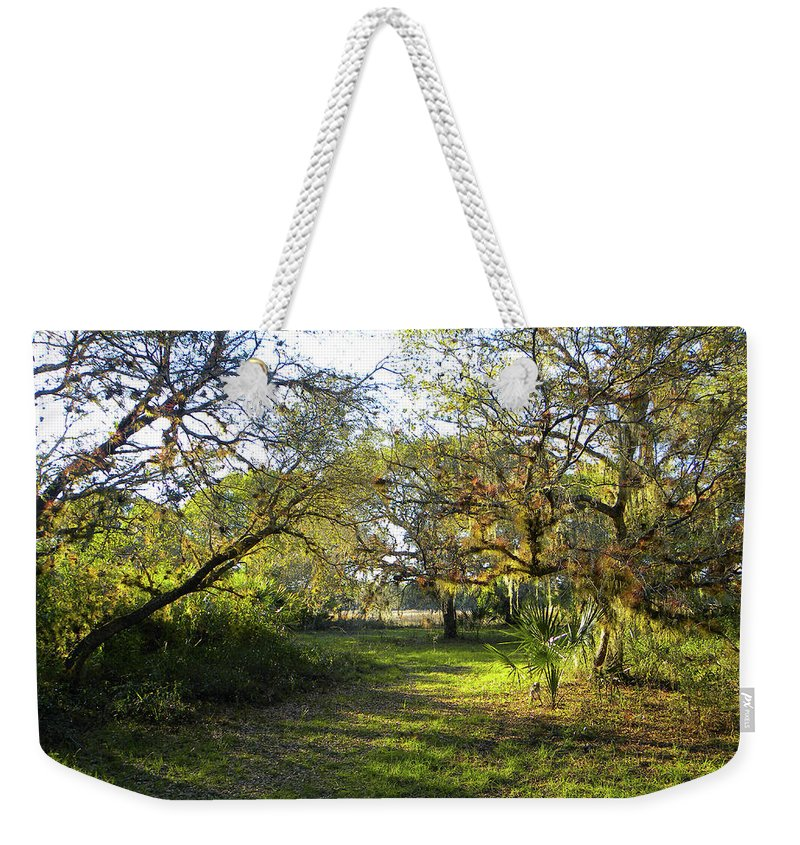 Park Weekender Tote Bag featuring the photograph Simply Magnificent by Ric Schafer
