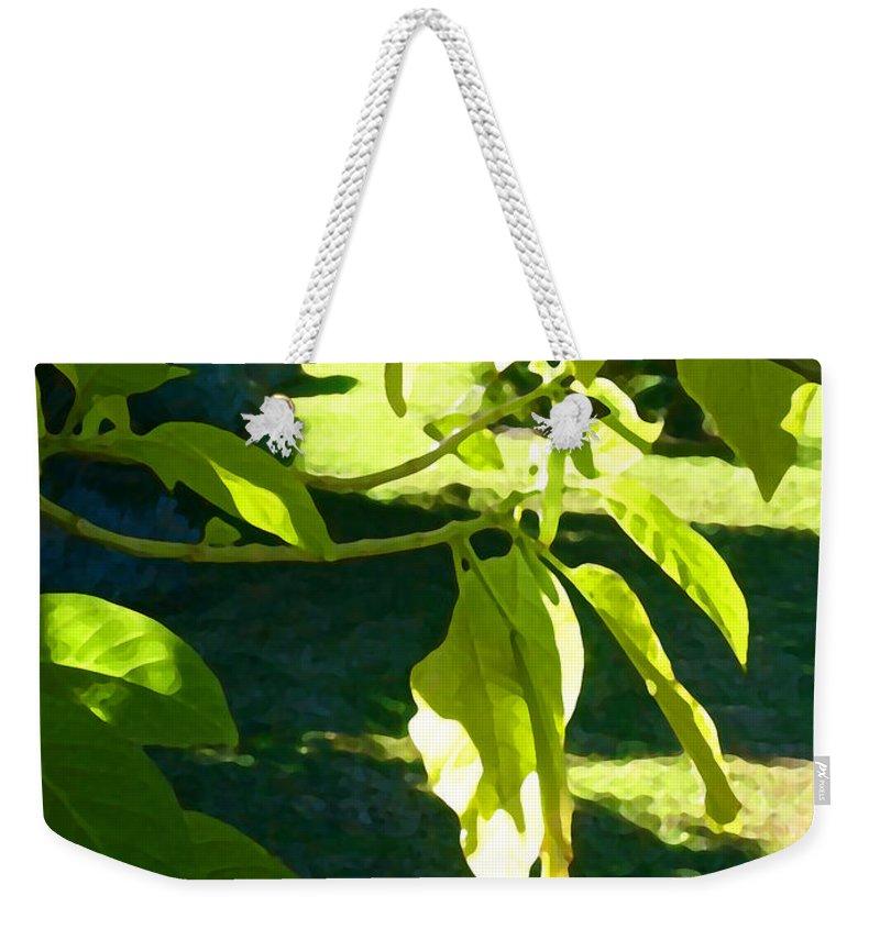 Spring Weekender Tote Bag featuring the painting Single Angel's Trumpet by Amy Vangsgard