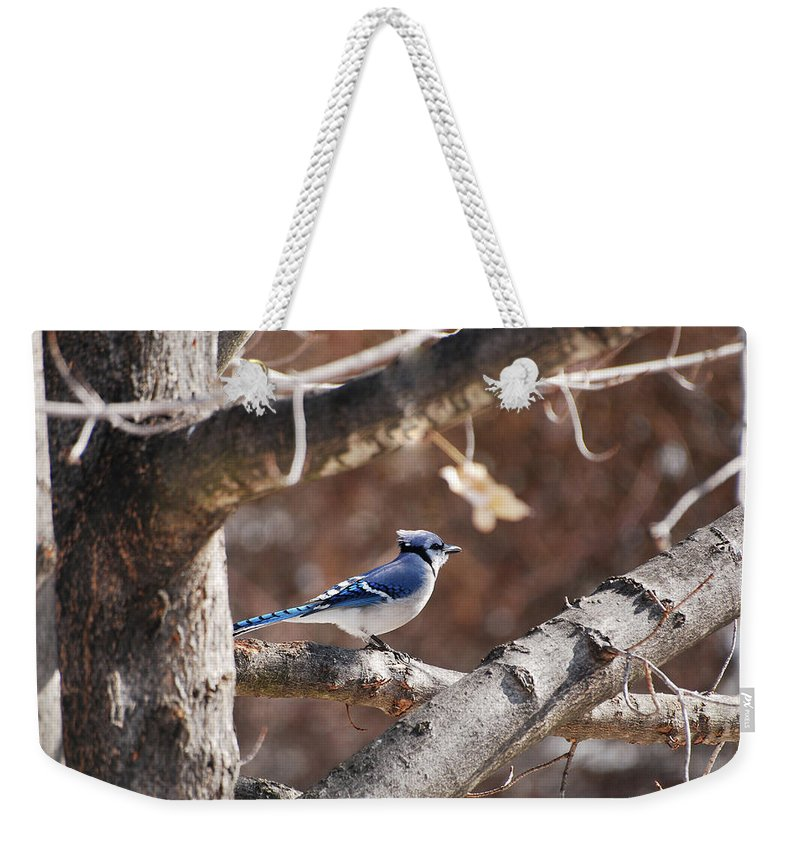 Bluejay Weekender Tote Bag featuring the photograph Single Blue And Available by Lori Tambakis