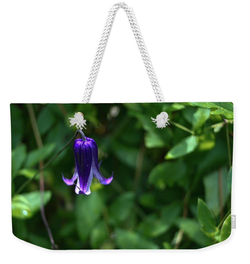 Single Weekender Tote Bag featuring the photograph Single Clematis Bell Blossom by Douglas Barnett