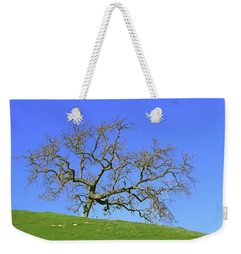 Los Olivos Weekender Tote Bag featuring the photograph Single Oak Tree by Art Block Collections