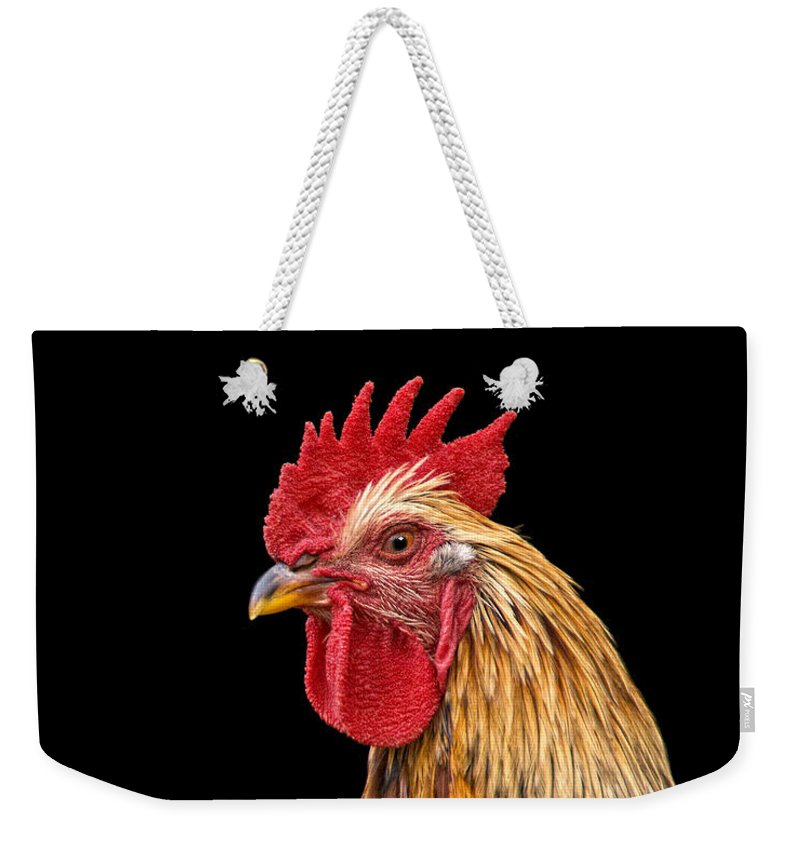 Rooster Weekender Tote Bag featuring the photograph Single Rooster by Timothy Flanigan and Debbie Flanigan Nature Exposure