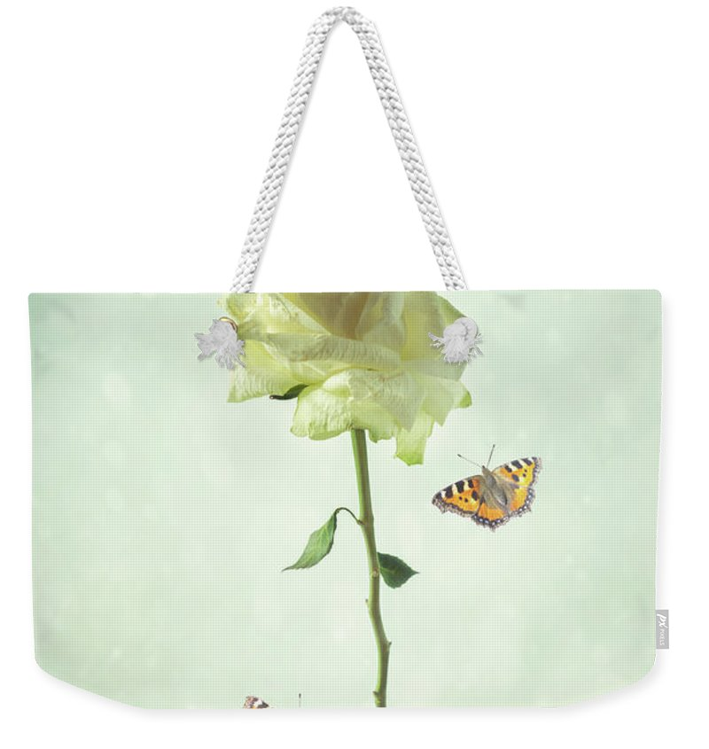 White Weekender Tote Bag featuring the photograph Single Stem White Rose by Amanda Elwell