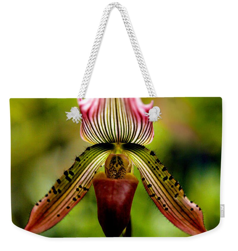 Orchid Weekender Tote Bag featuring the photograph Singular Beauty by Marilyn Hunt