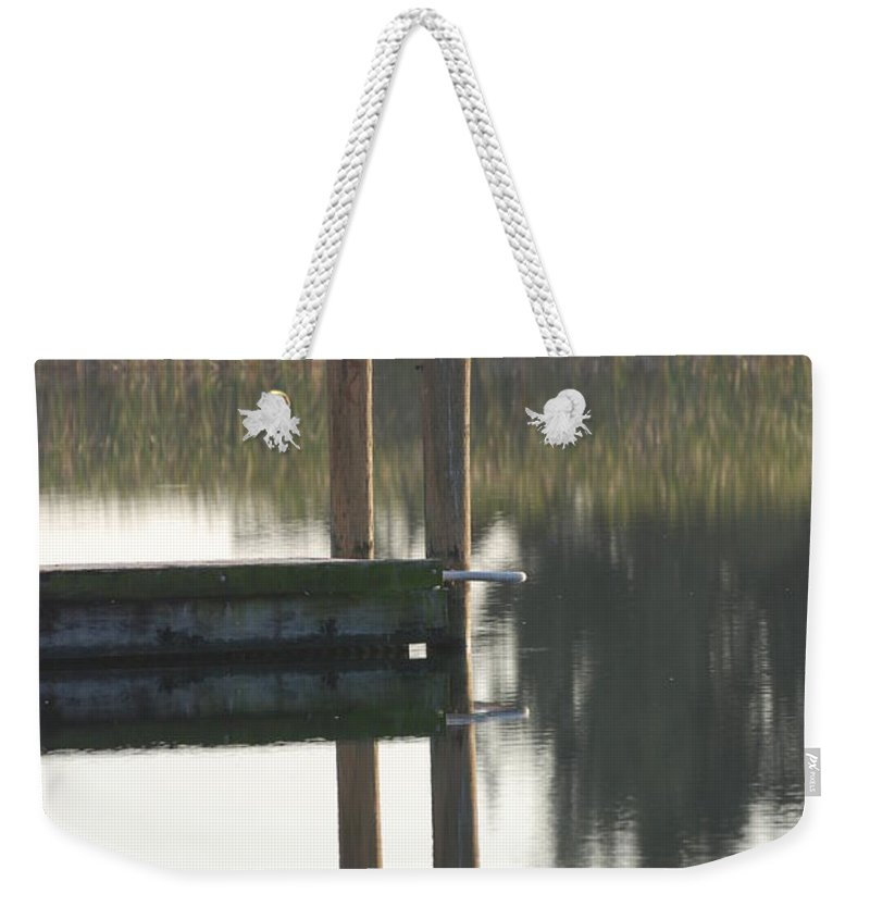 Grass Weekender Tote Bag featuring the photograph Sitting Bird by Rob Hans