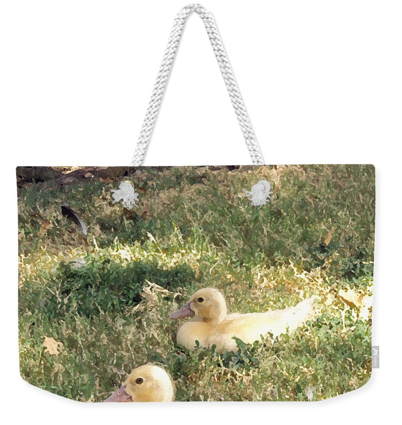 Duck Weekender Tote Bag featuring the photograph Sitting Ducks by Angelina Vick