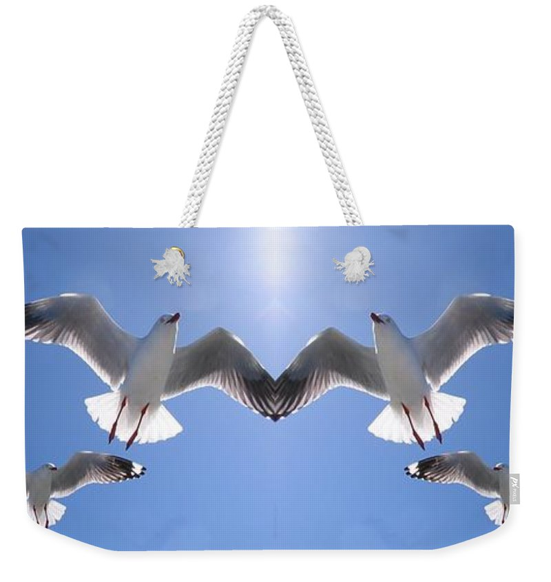 Geoff Childs Weekender Tote Bag featuring the photograph Six Heavenly Backlit Seagulls Flying Overhead In Blue Sky. by Geoff Childs