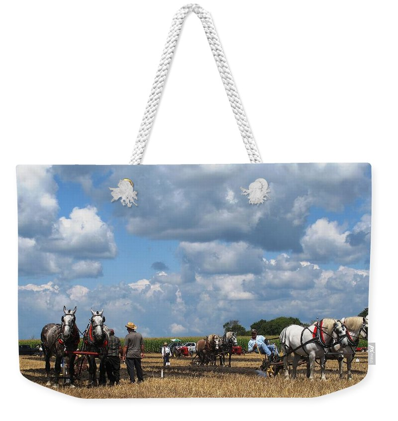 Horse Weekender Tote Bag featuring the photograph Six Horses by Ian MacDonald