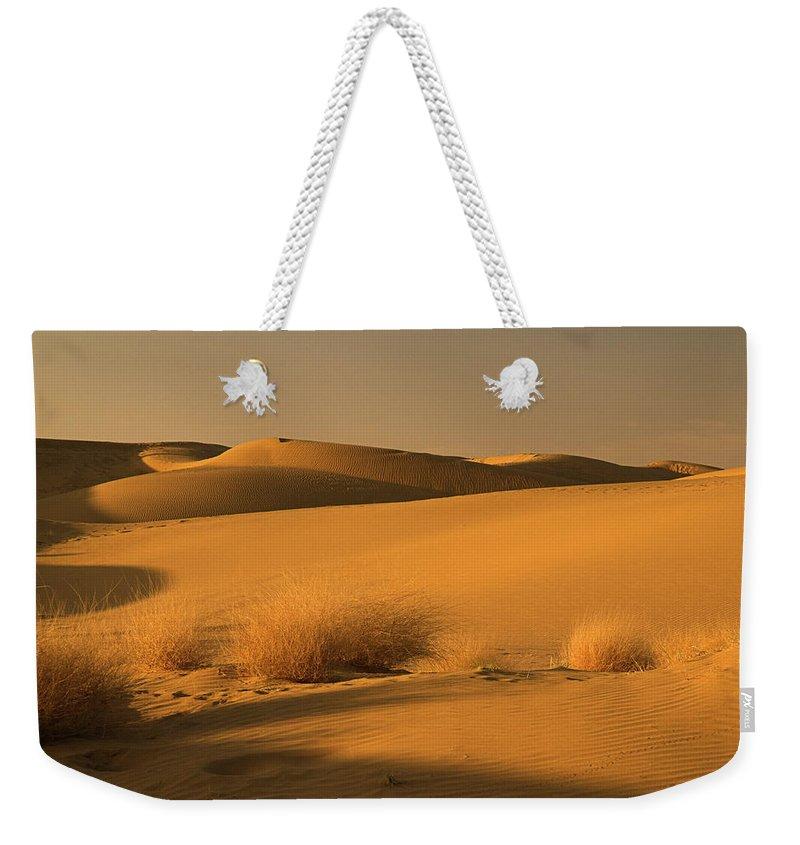 Desert Weekender Tote Bag featuring the photograph Skn 1124 Desert Landscape by Sunil Kapadia