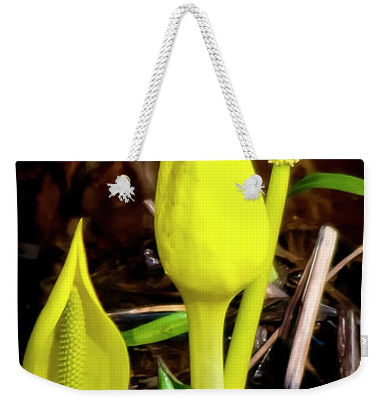 Nature Weekender Tote Bag featuring the photograph Skunk Cabbage by Albert Seger