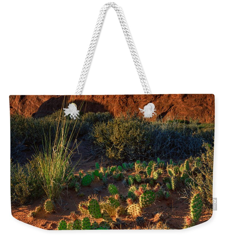 Skyline Arch Weekender Tote Bag featuring the photograph Skyline Arch by Rick Berk
