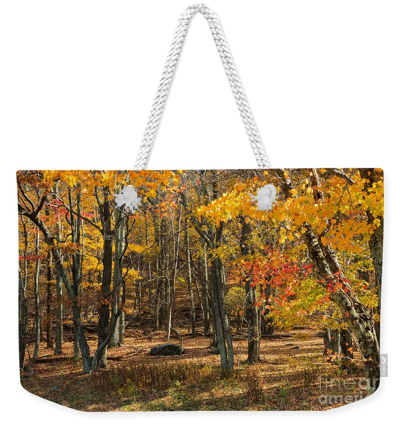 Road Weekender Tote Bag featuring the photograph Skyline Drive At Naked Creek Overlook In Shenandoah National Park by Louise Heusinkveld