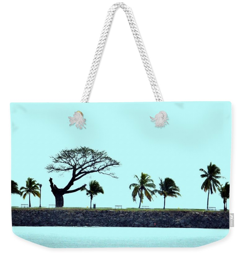 Panama Weekender Tote Bag featuring the photograph Skyline On Blue by Richard Ortolano