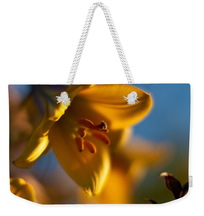 Lily Weekender Tote Bag featuring the photograph Skylit Lily by Mike Reid