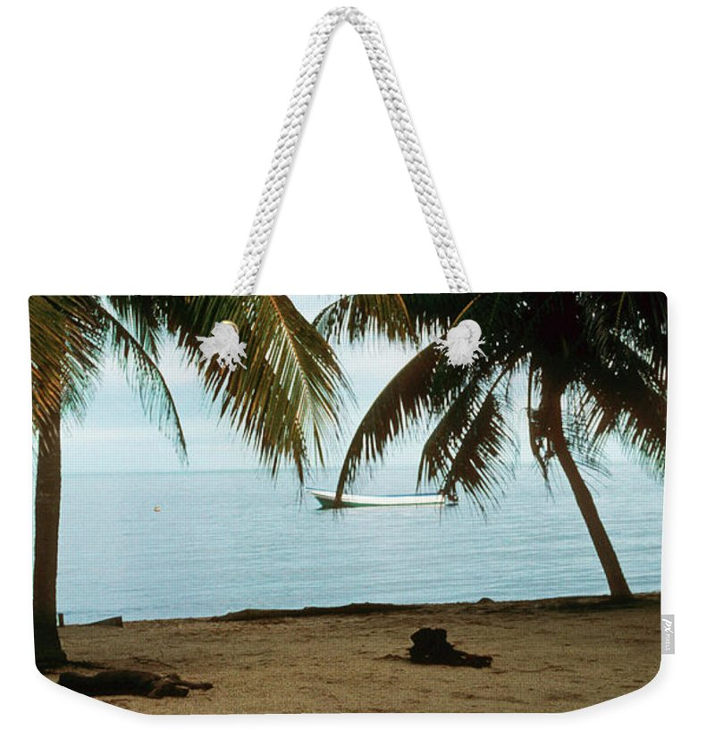Beach Weekender Tote Bag featuring the photograph Sleeping Dogs by Gary Wonning