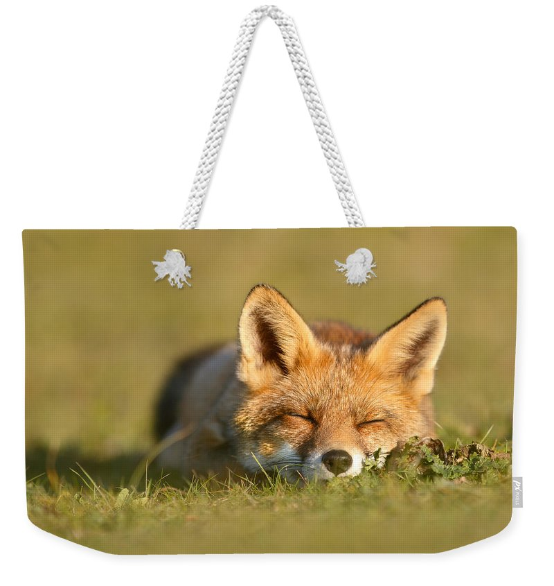 Carnivore Weekender Tote Bag featuring the photograph Sleeping Fox Kit by Roeselien Raimond