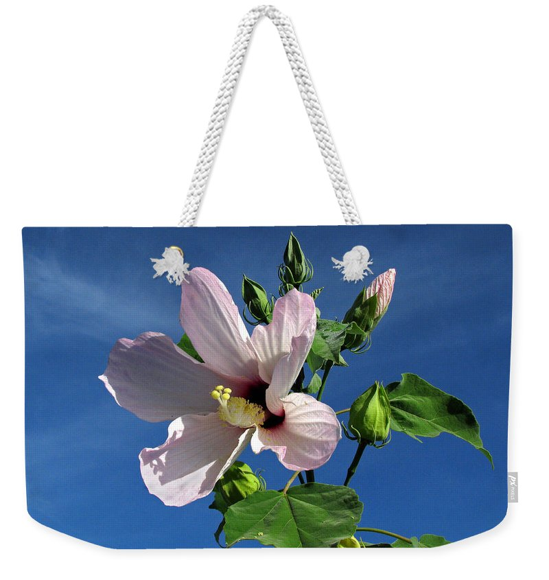 Floral Weekender Tote Bag featuring the photograph Sleepy Hibiscus by Peg Urban