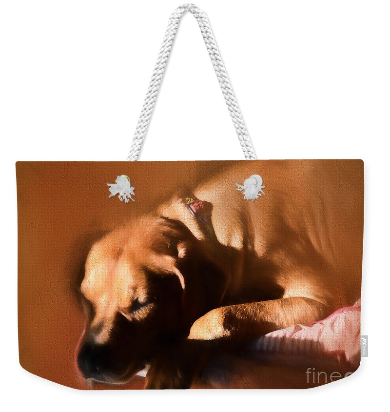 Dog Weekender Tote Bag featuring the photograph Sleepy Pooch by Mim White