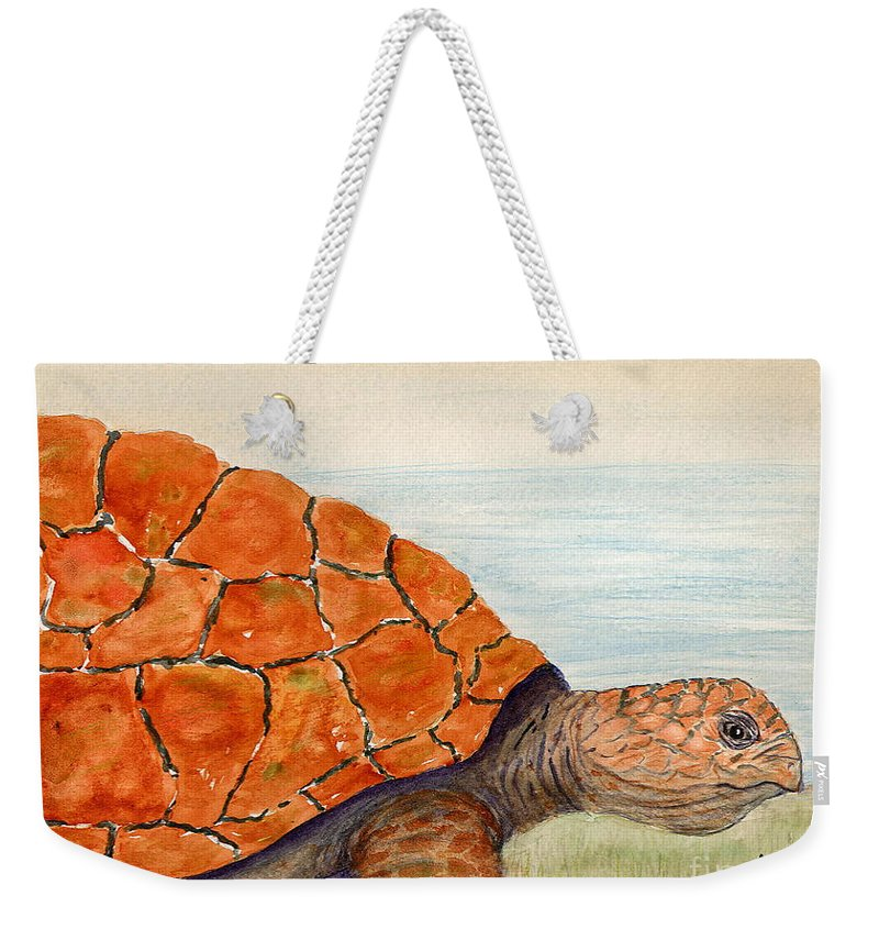 Turtle Weekender Tote Bag featuring the painting Slow And Steady by Mohamed Hirji