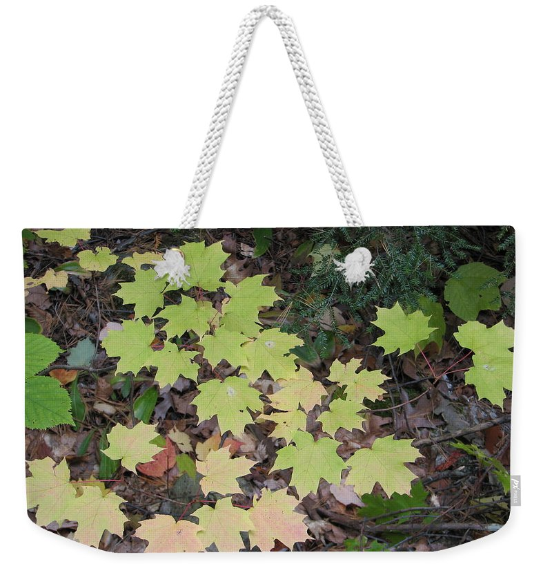 Leaves Weekender Tote Bag featuring the photograph Slow Fade by Kelly Mezzapelle