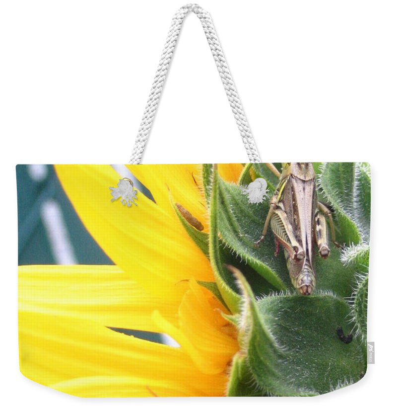 Sunflower Weekender Tote Bag featuring the photograph Small Break by Line Gagne
