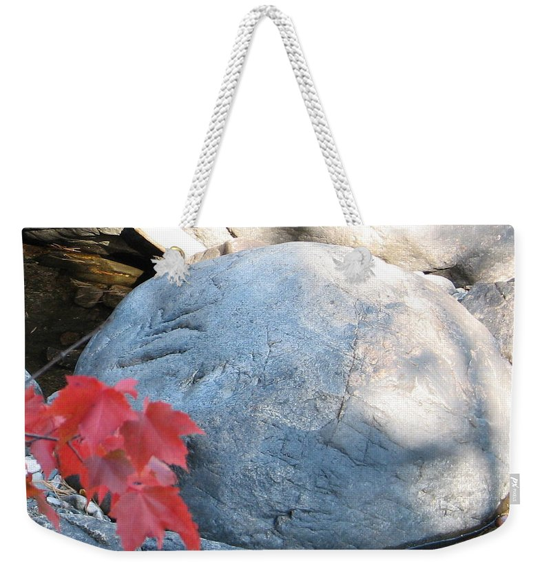 Stone Weekender Tote Bag featuring the photograph Small Wonder by Kelly Mezzapelle