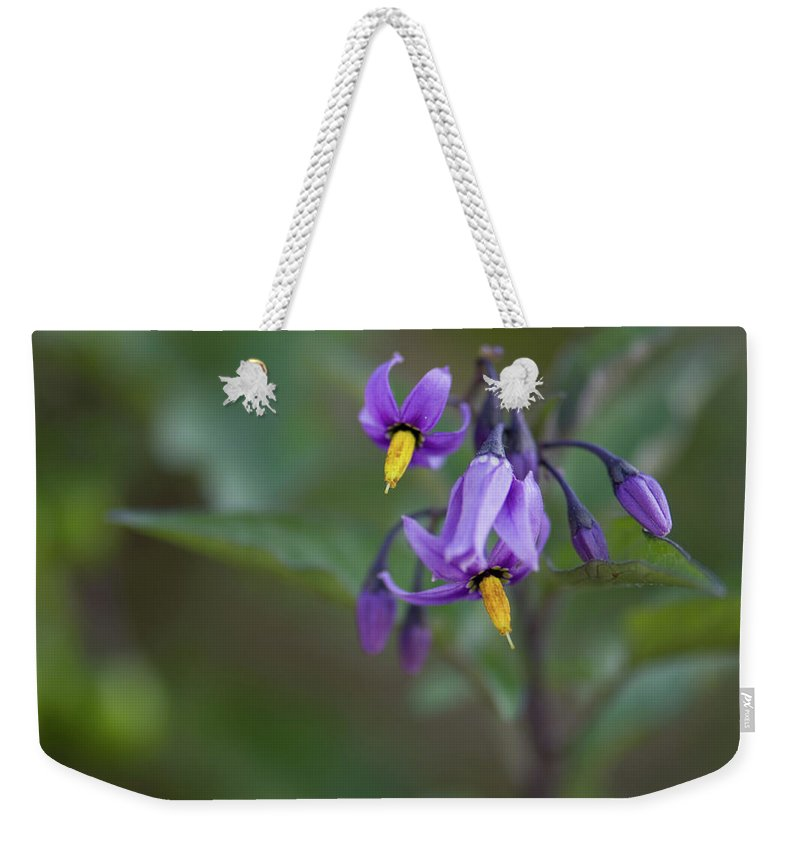 wild Flowers Weekender Tote Bag featuring the photograph Small Wonder by Paul Mangold