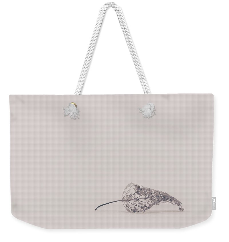 Leaf Weekender Tote Bag featuring the photograph Smallest Leaf by Scott Norris