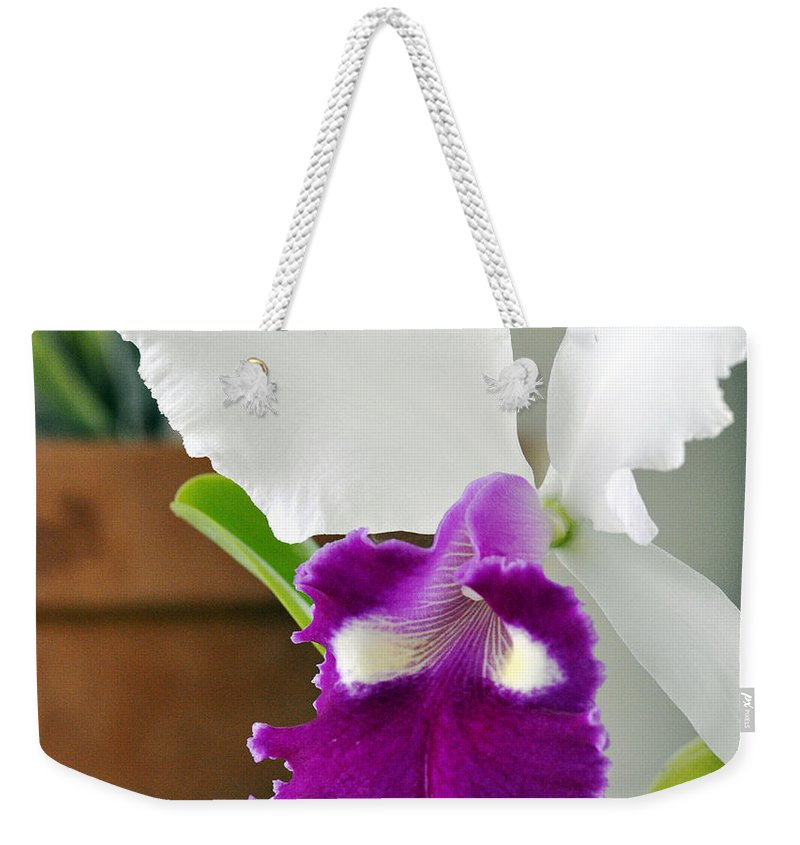 Clay Weekender Tote Bag featuring the photograph Smile by Clayton Bruster