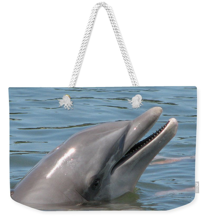 Dolphin Weekender Tote Bag featuring the photograph Smile by Stacey May