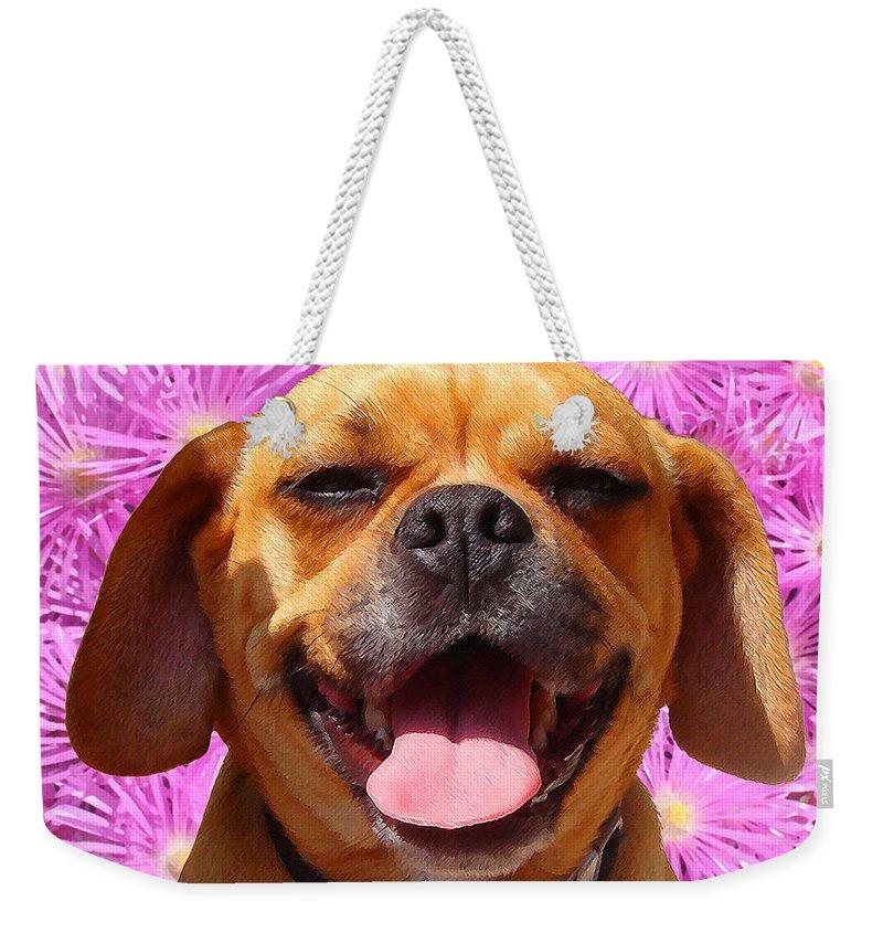Animal Weekender Tote Bag featuring the painting Smiling Pug by Amy Vangsgard